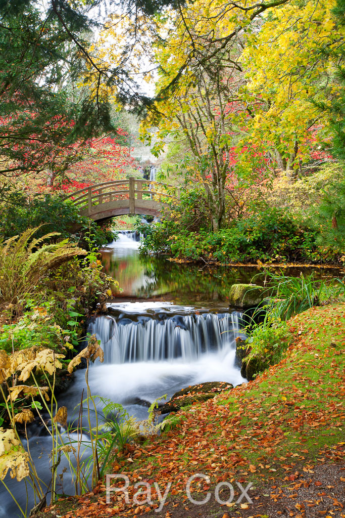 Ray cox garden photographer 39 s association for Stobo water gardens
