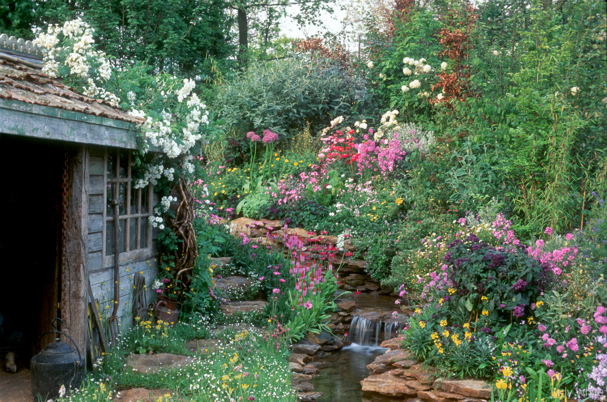 Garden Wall Murals Ideas Judy White Garden Photographer S Association