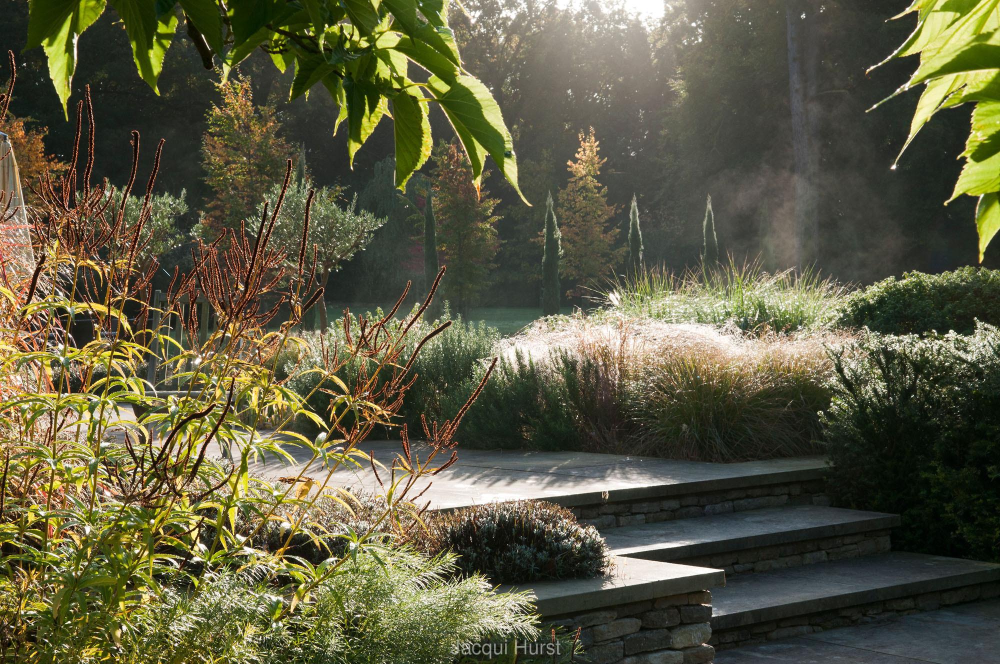 Garden Photographeru0027s Association