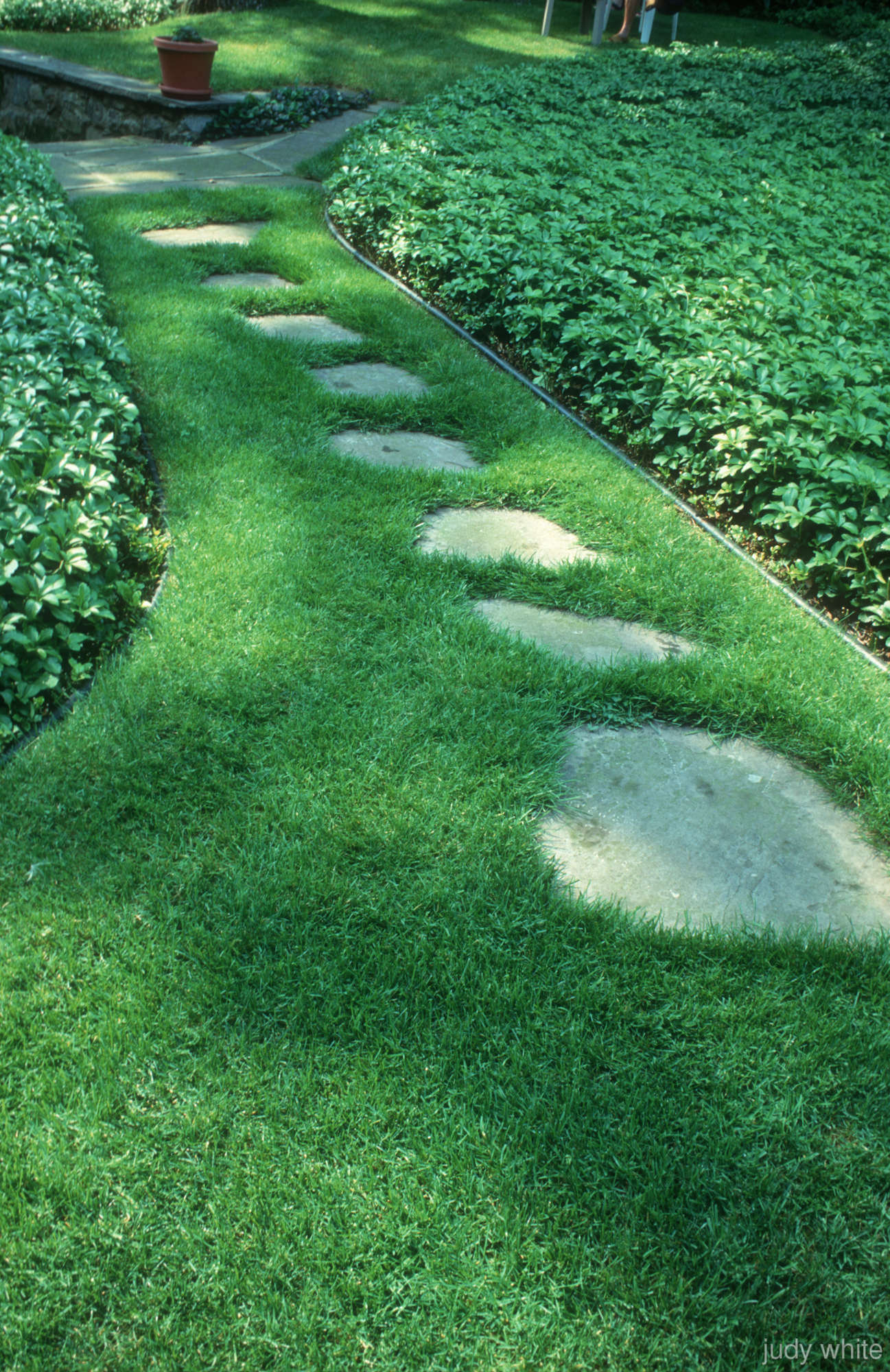 Judy white garden photographer 39 s association for Stone stepping stones for garden paths