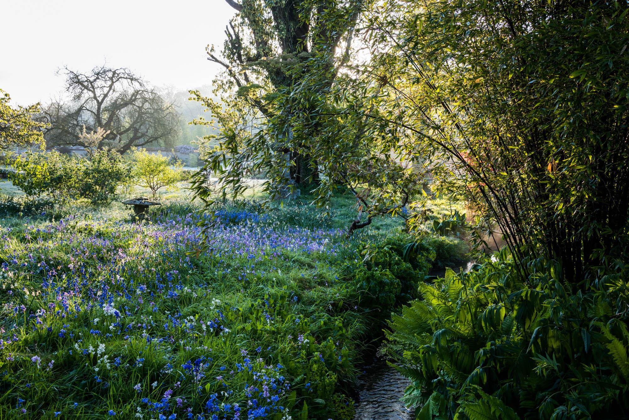 carole drake garden photographer u0027s association