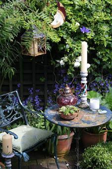 Graham L Strong Garden Photographer S Association