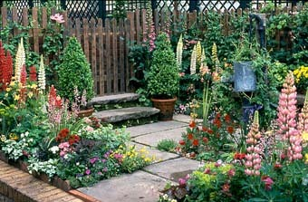 The Cottage Patio