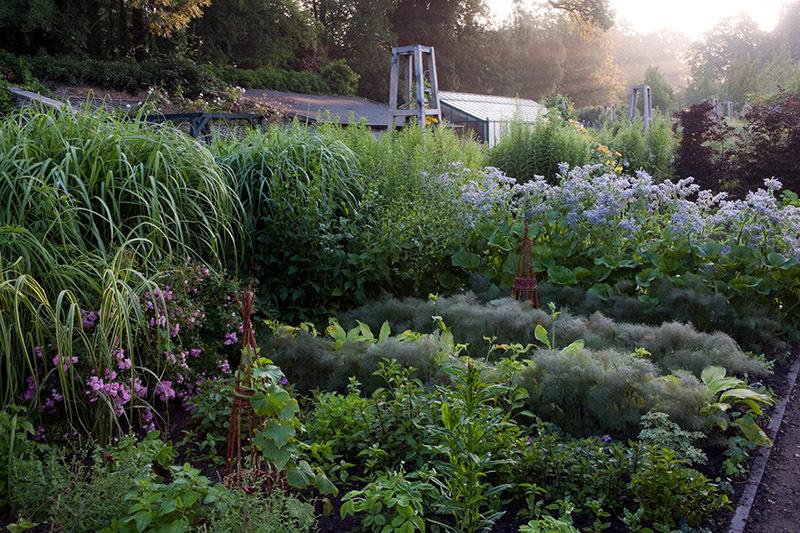 Gary Rogers   Garden Photographer\'s Association