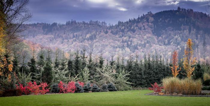 Autumn Morning at Hall Farm