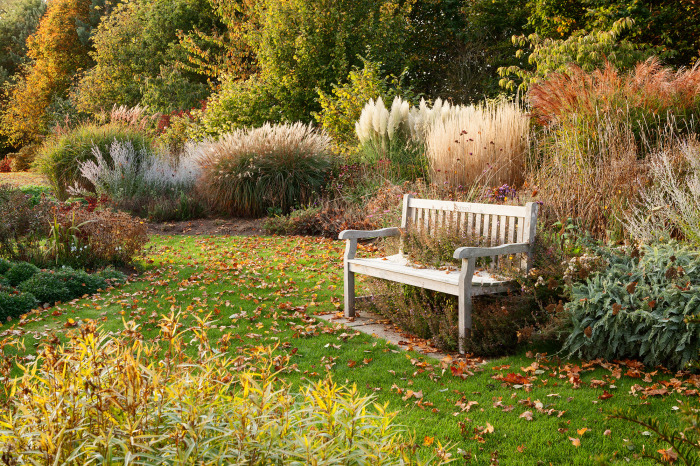 Autumn Evening in the Prairie Garden