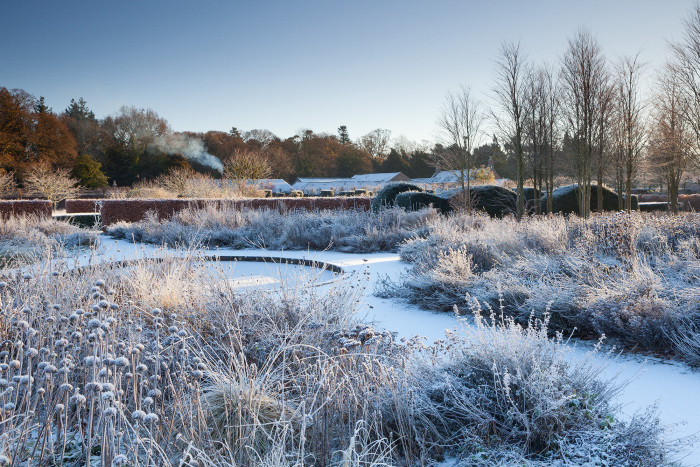 The Old Dipping Pond in Winter