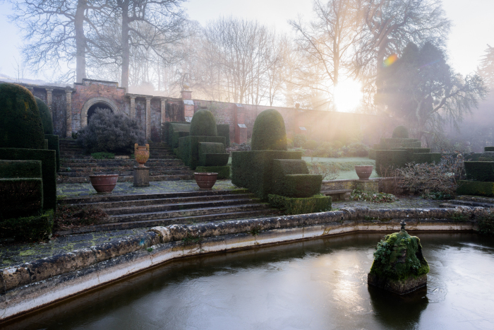 January in the Winter Garden