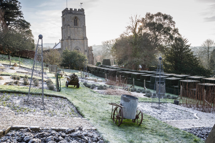 Frosty morning in the kitchen garden