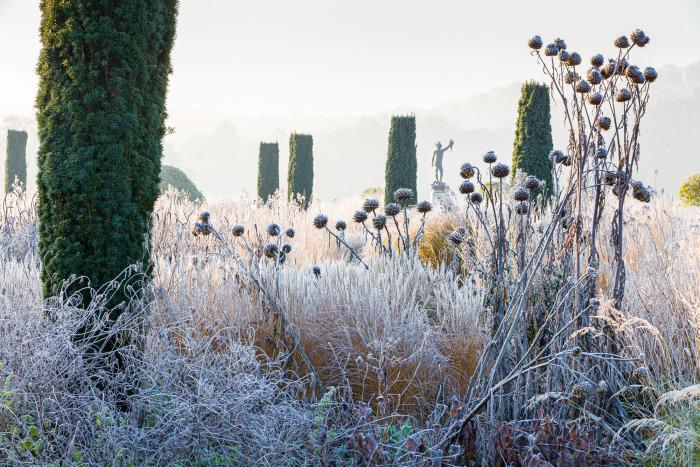 Frosty Dawn in the Italian Garden