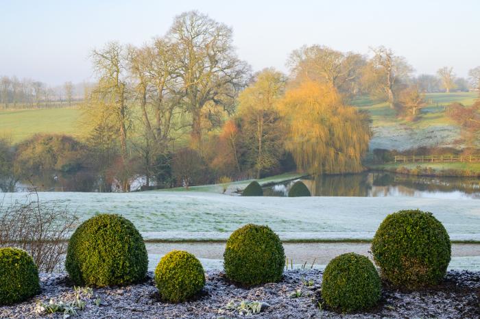Wintery Morning - Benington Lordship