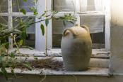 Pot on Window Sill