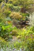 Hope House Garden.