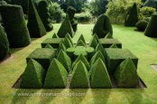Topiary garden based on Euclidean geometry