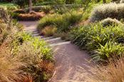 Australian and New Zealand Garden