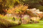 Autumn at RHS Harlow Carr