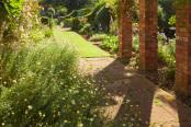 Hall Farm Garden in June