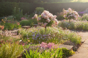 Sylvia's Garden at Newby Hall