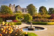 Helmsley Walled Garden in Autumn