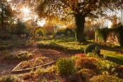 The Sunken Garden in Autumn