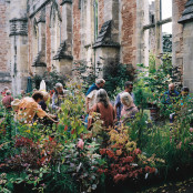 Special plants fair