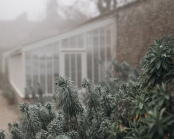 December in the Walled Garden