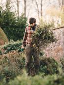 November planting