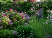 A secret walled garden