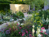 Best in Show Chelsea 2011 'Telegraph Garden, Cleve West""