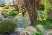 A Spring Symphony