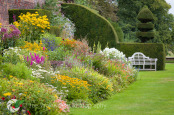 Herbaceous Border in September