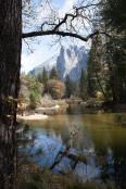 autumn colour in Yosemite