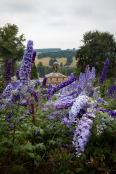 Cutting Garden at Chatsworth House