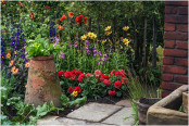Dahlias and vegetables in 'The Watchmaker's Garden'