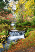 Waterfall in Autumn at Stobo