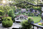 Early light in a Lancashire garden