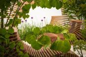 Molecular Garden
