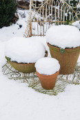 Snow capped clay pots