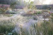 The Paradise garden at RHS Bridgewater