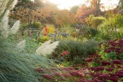 Dusk in an autumnal garden