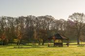 Spring sunrise at Newton Surmaville