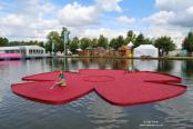 RHS Hampton Court Palace Flower Show 2014