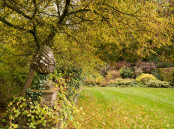 Autumn Colours at Hodges Barn