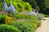 The Herbaceous Border, Waterperry Gardens