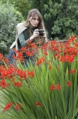Lady Photographing Flowers