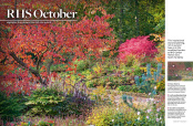 The Garden magazine Inspiration feature