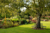 Autumn Borders at Osterly Park