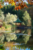 Lakeside Pagoda in Autumn