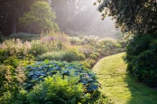 Early morning light in The Bressingham Gardens