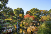 RHS Wisley rock garden in autumn